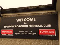 Harrows Artificial Christmas Trees by Harrow Borough Fc Non League Club