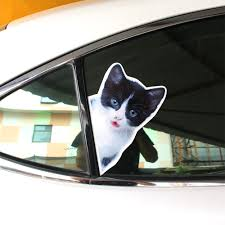 Funny Dog Cat Sticker Reflective Car Stickers And Decals Car ... Decals For Cars And Trucks 11 Best Images About Windshield On Car Visor Decal Sticker Graphic Window How To Apply A Sun Strip Etc Youtube Supplies Creative Hot Charm Handmade 2017 New Laser Reflective Letters Auto Front Dodge Challenger Graphicsstripesdecals Streetgrafx Product Gmc Truck Motsports Windshield Topper Window Decal Sticker Dirty Stickers Amazoncom Dabbledown Like My Ex Buy 60 Supergirl V4 Powergirl Girl Dc Comics Logo Printed Yee 36 Granger Smith Store Quotes Quotesgram