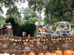 Pumpkin Patch Arboretum Dallas Tx by Texas Archives A And Her Passporta And Her Passport
