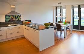 Tropical Kitchen Backsplash Photo