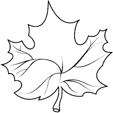 Leaf Outline Clip Art Black And White Clipart library Index of ces clipart Carson