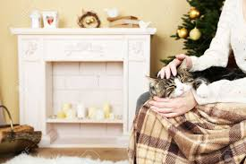 Woman And Cute Cat Sitting On Rocking Chair In The Front Of The..