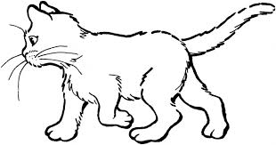Cat Coloring Pages Print Image Search Results
