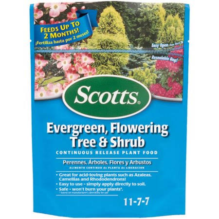 Scotts Evergreen Dry Plant Food - 3lbs