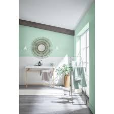 schöner wohnen wandfarbe naturell eukalyptusgrün matt 2 5 l