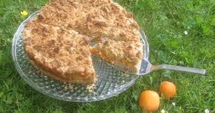 barbaras spielwiese aprikosen streusel kuchen