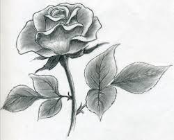 Rose Drawing S S Media Cache Ak0 Pinimg originals 89 0d 6b