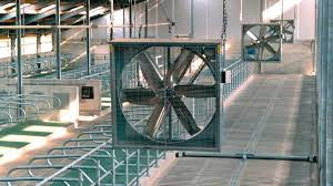 Fans For Barn Ventilation Stainless Steel Vent Caps Wall Vents Roof Cfd Simulation Poultry Barn Venlation Venlation System Smarthorsetubes For Fresh Air Cditions In Calf Barn Dairy Lane Systems Individual Systems Stables Vetsmarttubes Gmbh Designing Healthy Your Blackburn Schaefer Our Aquaponic Journey Part Three Adding A Window To Professional Grade Products 9800394 Shutter Exhaust Fan Garage Definition Sketches Naturally Ventilated Above Slotted Suppliers And
