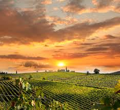 Wallpapers Tuscany Italy Sun Nature Sky Fields Scenery Sunrises And