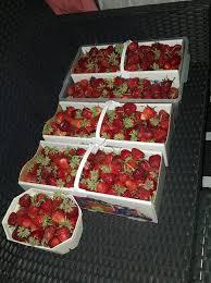 1 beitrag erdbeer mascarpone quark torte grillforum und
