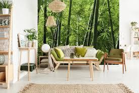 fototapete bambus im wohnzimmer zwentner