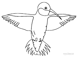 Perfect Hummingbird Coloring Pages Best And Awesome Ideas