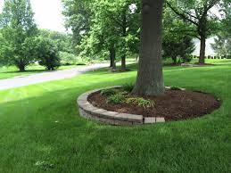 Best 25+ Landscaping Around Trees Ideas On Pinterest | Tree Base ... Garden Design With Backyard Trees Privacy Yard A Veggie Bed Chicken Coop And Fire Pit You Bet How To Illuminate Your With Landscape Lighting Hgtv Plant Fruit Tree In The Backyard Woodchip Youtube Privacy 10 Best Plants Grow Bob Vila 51 Front Landscaping Ideas Designs A Wonderful Dilemma Ramblings From Desert Plant Shade Digital Jokers Growing Bana Trees In Wearefound Home 25 Potted Ideas On Pinterest Indoor Lemon Tree