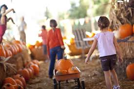 Halloween At Greenfield Village 2014 by Not So Spooky U0027 Halloween Happenings U0026 Fall Fun U2013 Oakland County Blog