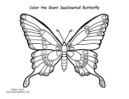 Butterflies Coloring Page Swallowtail Butterfly Colouring Pages Life Cycle