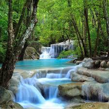 fototapete forest waterfall wohnzimmer kaufen auf ricardo