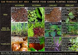 Winter Garden Crash Course StatebyState Gardening Web Articles