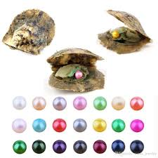 100 Where Is Dhgate Located 2019 2018 Wholesale South Sea Pearl Oyster With AAA 6 7mm Round 25