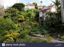 100 Mosman Houses In Bay Sydney NSW Australia Stock Photo 24809336 Alamy