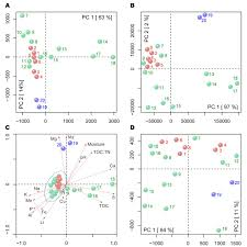 TNFα Modulates Genomewide Redistribution Of ΔNp63αTAp73 And NFκB