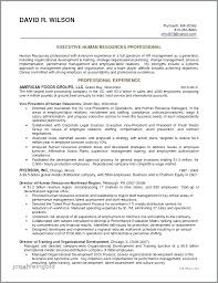 Resume Examples Uk Best Resume Template Whizzme