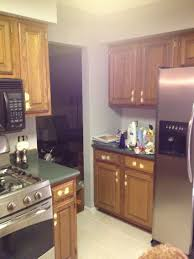 Narrow Galley Kitchen Ideas by 100 Galley Kitchen Design Idea Home Small Galley Kitchen Design In