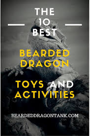 Bearded Dragon Shedding Process by The 10 Best Bearded Dragon Toys And Activities Bearded Dragon Tank