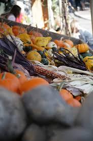 Dd Pumpkin Patch Terrebonne Oregon by 31 Best Bend Oregon Images On Pinterest Central Oregon Portland