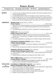 Profile For Resume Examples Example Professional Paragraph Form