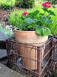 Milk Crates Display Potted Plants Might Help With Moving Them About As Well