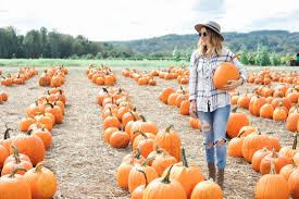Pumpkin Picking In Ct by Style Pumpkin Picking In My Old Backyard Oh So Glam