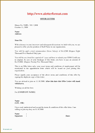 Job Offer Letter Format Dubai Examples Executive Resumes Appointment Doc