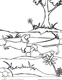 Color The Dachshund Dogs