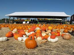 Great Pumpkin Patch Frederick Md by October 2017 Festivals And Events In The Washington Dc Area