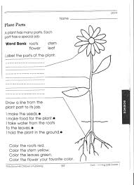 Life Cycle Of A Pumpkin Seed Worksheet by Parts Of A Plant Spelling Worksheets Fun Words And Life Science