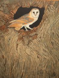 Robert Fuller Column: Having A Hoot At The Old Tree Stump ... Barn Owl Perching On A Tree Stump Facing Forward Stock Photo The Owls Of Australia Australian Geographic Audubon Field Guide Beautiful Perched 275234486 Barred Owl Vs Barn Hollybeth Organics Luxury Skin Care Why You Want Buddies Coast News Group Sleeping By Day Picture And Sitting Venezuela 77669470 Shutterstock Rescue Building Awareness Providing Escapes And Photography Owls Owlets At Charlecote Park Barnaby The Ohio Wildlife Center