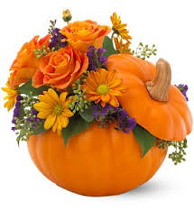 Pumpkin Patch Near Pensacola Fl by Flowers In A Gift Delivery Pensacola Fl A Flower Shop