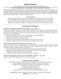 Real Estate Project Manager Resume Sample Resumes