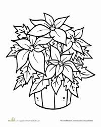 Preschool Holidays Seasons Worksheets Poinsettia Plant Coloring Page