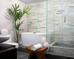 Zebra Print Bathroom Decor by Bathroom Vintage Potted Plants For Classic Bathrooms With Zebra