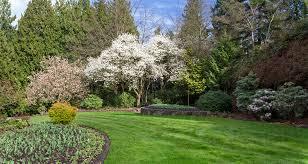 North Quarry Gardens in Queen Elizabeth Park • Michael Russell