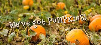 Lawrence Pumpkin Patch by 2016 Kansas City Pumpkin Patch Directory Kansas City Children U0027s