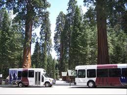 Christmas Tree Lane Fresno Shuttle by Visit Visalia Blog Visalia California Your Gateway To The