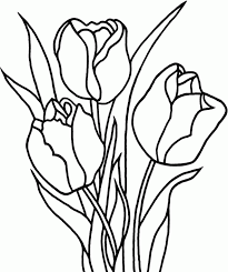 Uncategorized Tulip Coloring Pages To Print Printable 287571