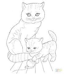Best Of Cute Baby Animals Coloring Pages Pictures Animal To Print Cat Mother