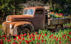 Old Truck Planted With Tulips Stock Photo, Picture And Royalty Free ... Enchanting Used Old Trucks Elaboration Classic Cars Ideas Boiqinfo Truck At Walmart Parked Away From Everyone Imgur Gold King Mine Ghost Town Sign On Truck Jerome Az Stock Video Free Images Vintage Old Blue Oltimer Pickup Us Car Wallpapers Wallpaper Cave In Autumn Forest Stock Image Image Of 45668297 Pictures Semi Photo Galleries Download Toy With Leeks Leaks Richard Hall Print Kitchen Photos Metal Art Studio Swedes By Todd Mandeville Americana Indian Alamy