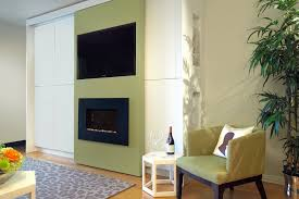 Electric Fireplace Ideas Living Room Contemporary With None