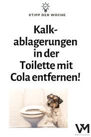 toilette mit cola reinigen kalkablagerungen entfernen