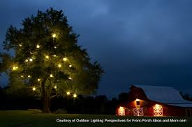 Fabulous Outdoor Tree Lighting Ideas and Outdoor Christmas Light