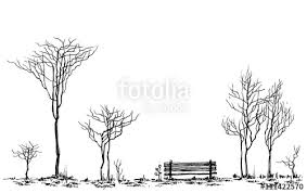 Stylized park decor bench and trees drawing